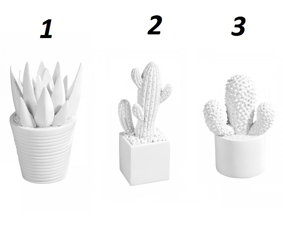 Vaso vasetto decoro design cactus vari modelli bianco - Cactus da interno ...