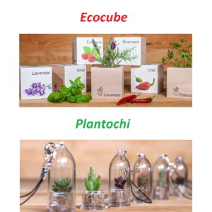 Ecocube Plantochi